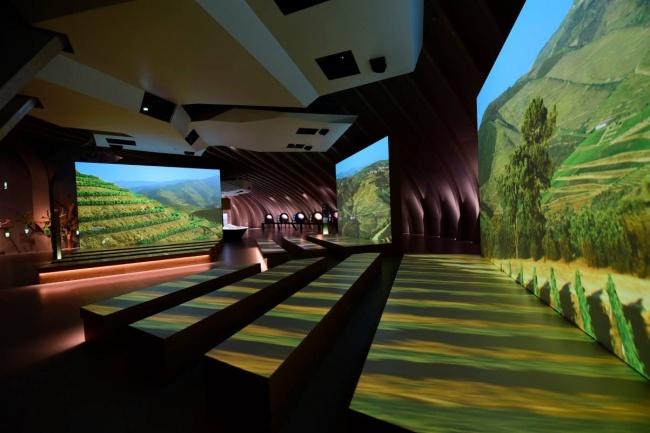 Citta-del-vino-museo-tematico-bordeaux-5
