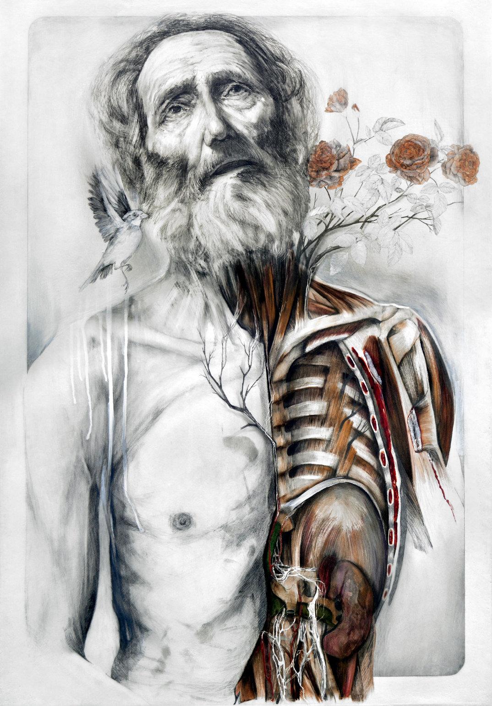 dipinti-corpi-anatomia-nunzio-paci-1
