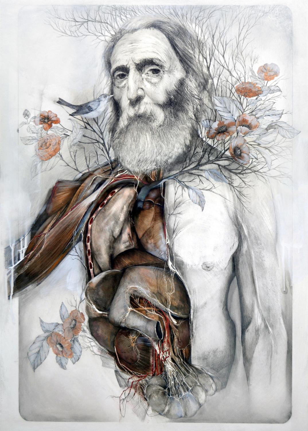 dipinti-corpi-anatomia-nunzio-paci-2