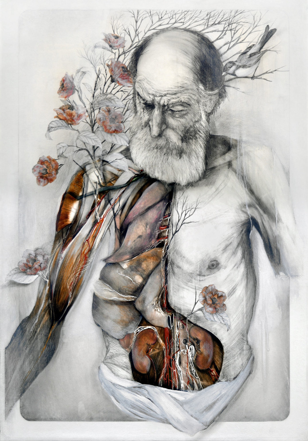 dipinti-corpi-anatomia-nunzio-paci-6