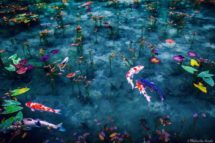 foto-stagione-piogge-giappone-sembrano-dipinti-hidenobu-suzuki-03