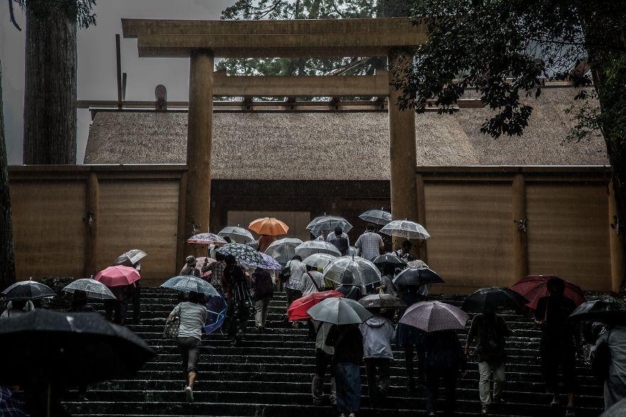 foto-stagione-piogge-giappone-sembrano-dipinti-hidenobu-suzuki-08