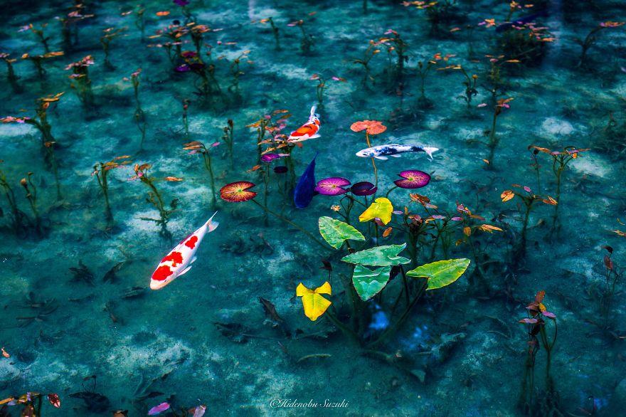 foto-stagione-piogge-giappone-sembrano-dipinti-hidenobu-suzuki-11