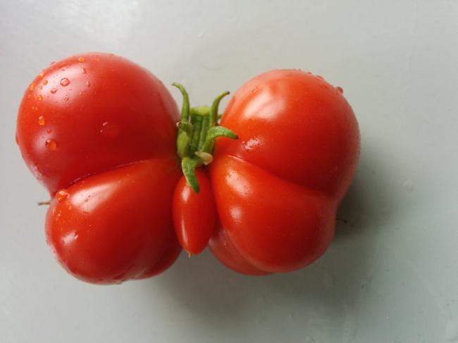 frutta-verdure-strane-forme-illusioni-ottiche-01