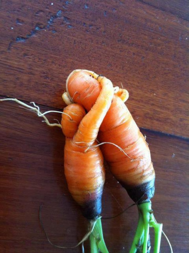 frutta-verdure-strane-forme-illusioni-ottiche-04