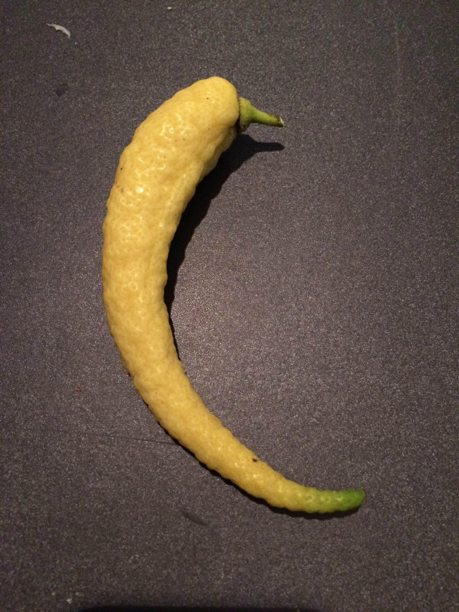 frutta-verdure-strane-forme-illusioni-ottiche-06