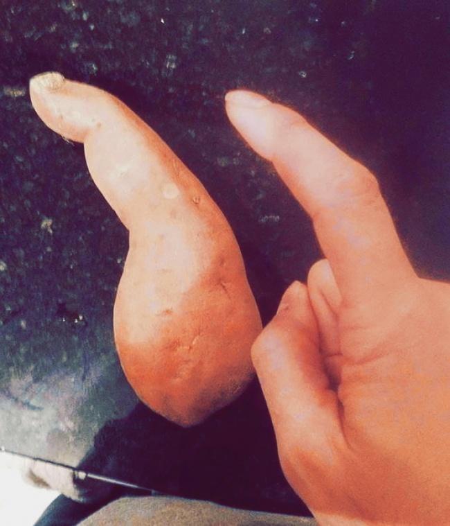 frutta-verdure-strane-forme-illusioni-ottiche-09
