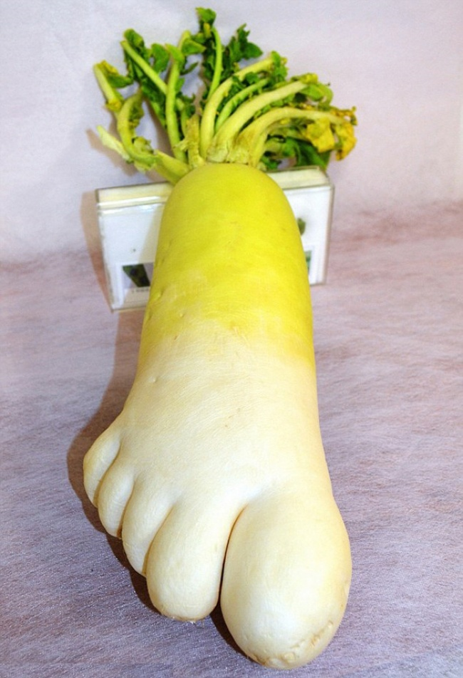 frutta-verdure-strane-forme-illusioni-ottiche-10