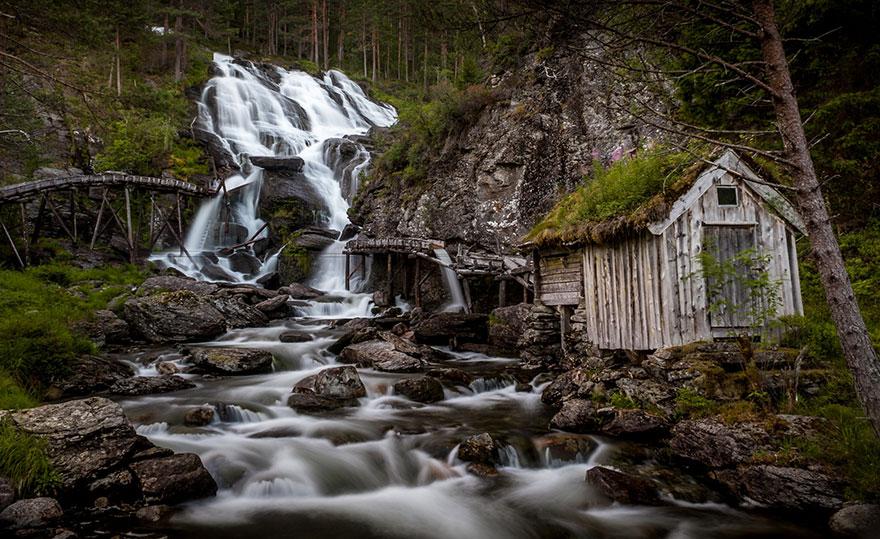 immagini-case-tetti-erba-scandinavia-08
