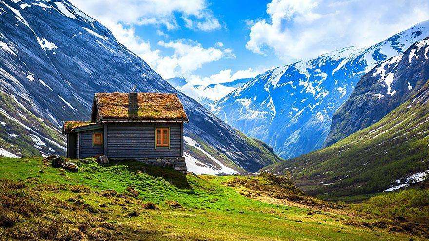 immagini-case-tetti-erba-scandinavia-10