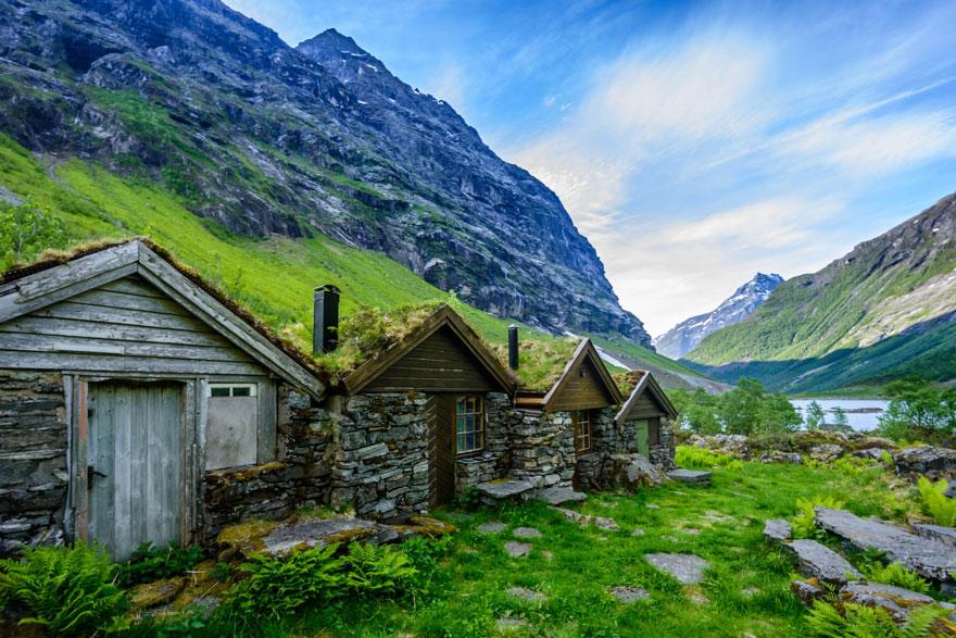 immagini-case-tetti-erba-scandinavia-11