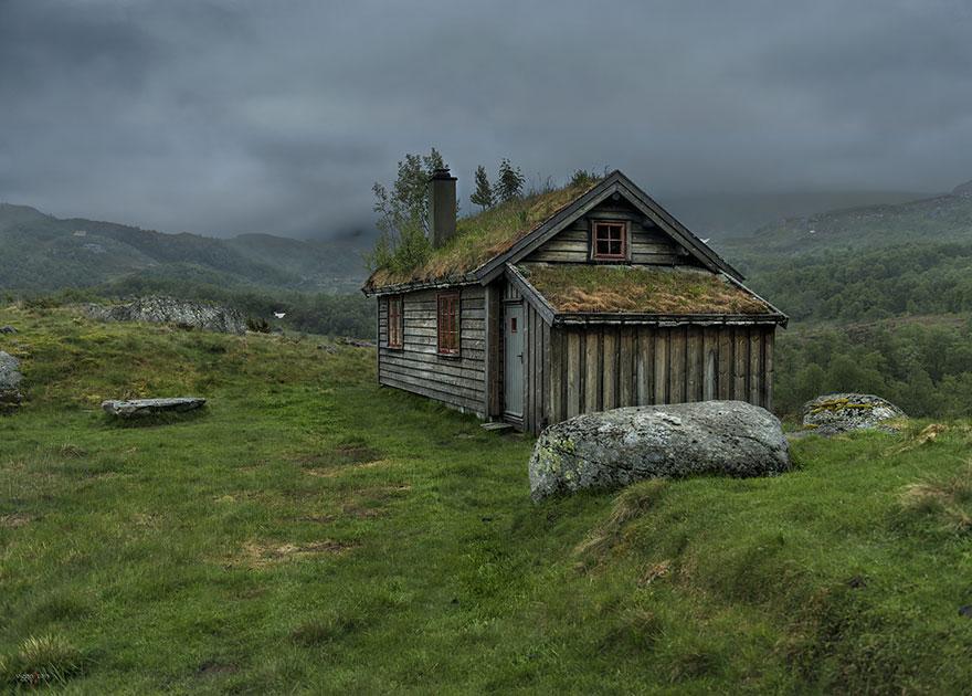 immagini-case-tetti-erba-scandinavia-13