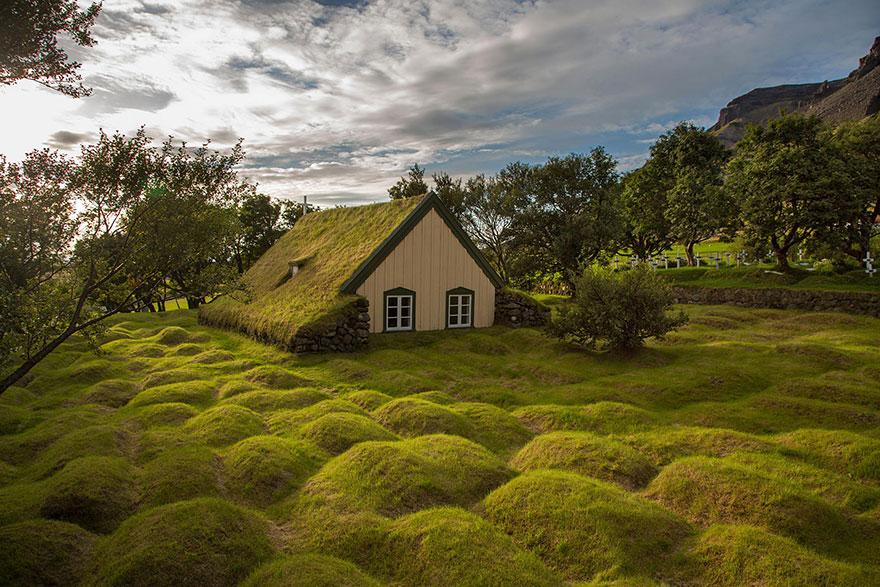 immagini-case-tetti-erba-scandinavia-14