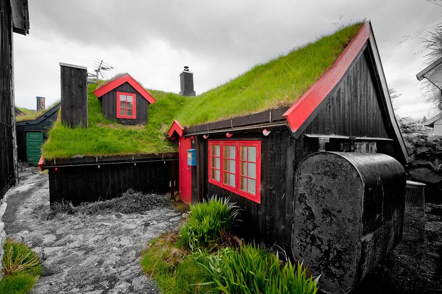 immagini-case-tetti-erba-scandinavia-15