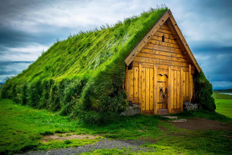 immagini-case-tetti-erba-scandinavia-20
