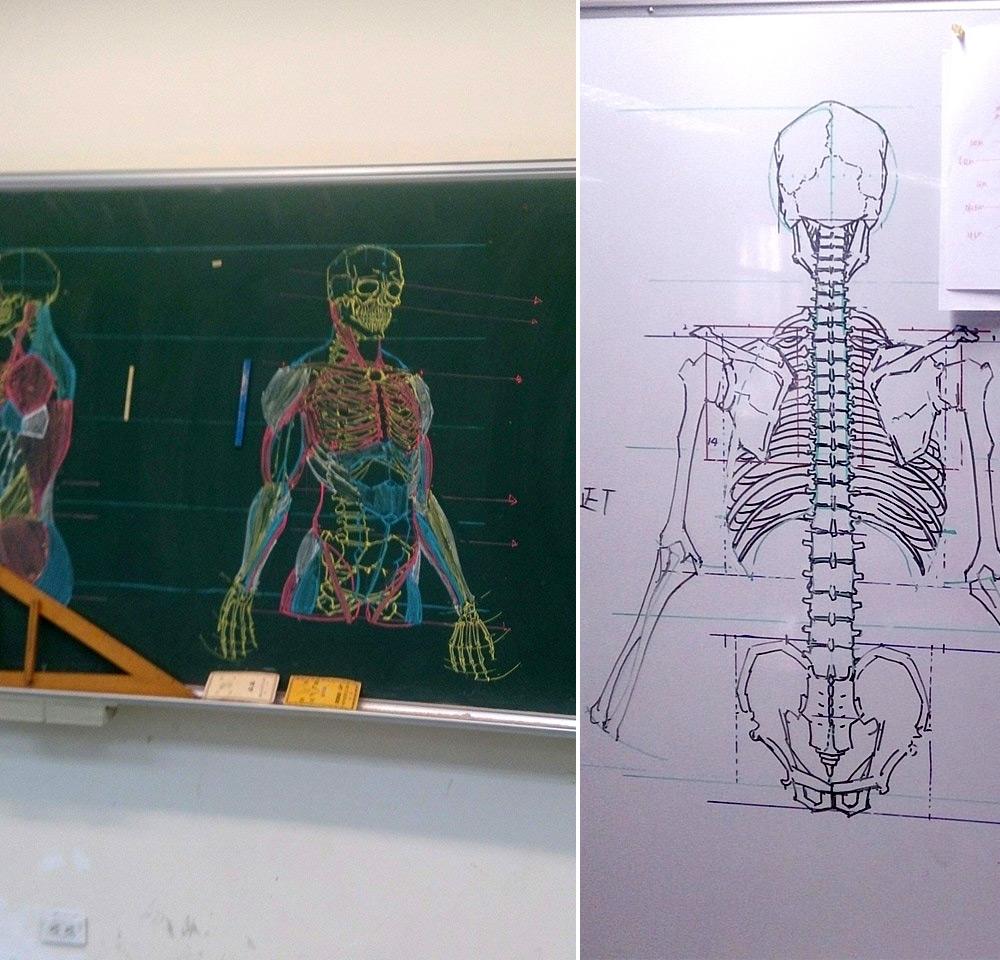 insegnante-disegni-anatomici-mano-libera-lavagna-chuan-bin-chung-8
