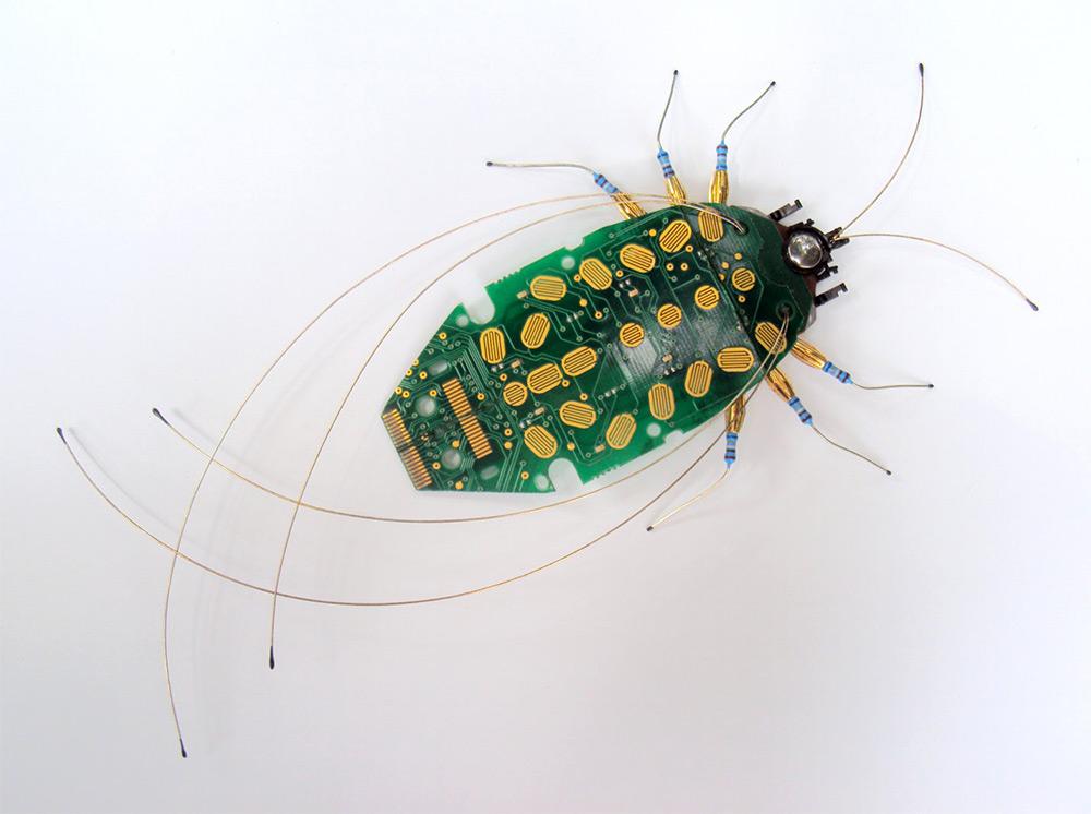 insetti-costruiti-circuiti-elettronici-computer-julie-alice-chappell-06