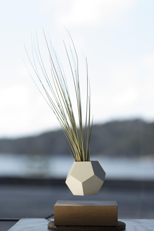 vaso-piante-galleggiante-rotante-lyfe-2