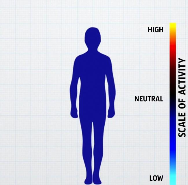 come-corpo-reagisce-emozioni-grafici-3