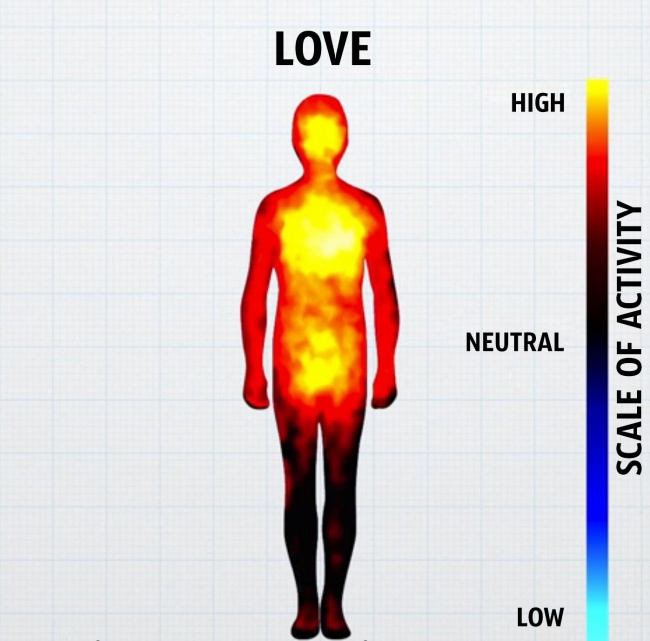 come-corpo-reagisce-emozioni-grafici-4