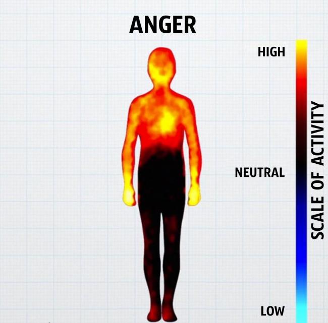 come-corpo-reagisce-emozioni-grafici-7