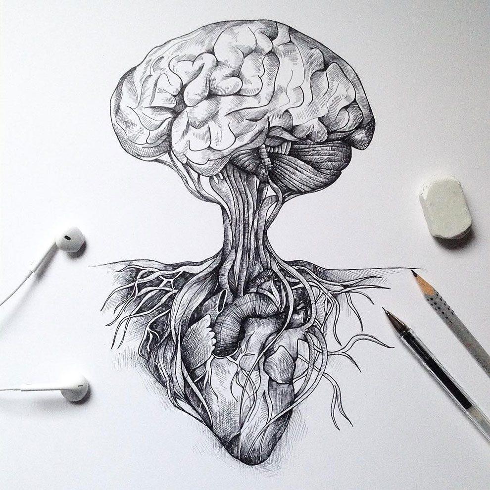disegni-inchiostro-animali-alberi-alfred-basha-07