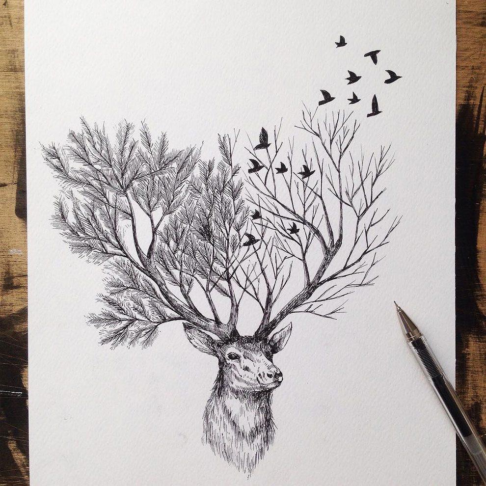 disegni-inchiostro-animali-alberi-alfred-basha-14