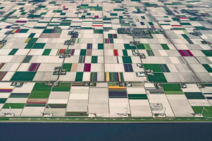 foto-aeree-campi-tulipani-olanda-bernhard-lang-03