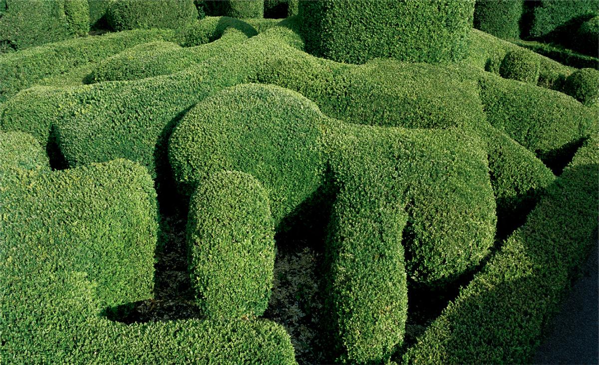 foto-giardini-castello-marqueyssac-francia-arte-topiaria-philippe-jarrigeon-7