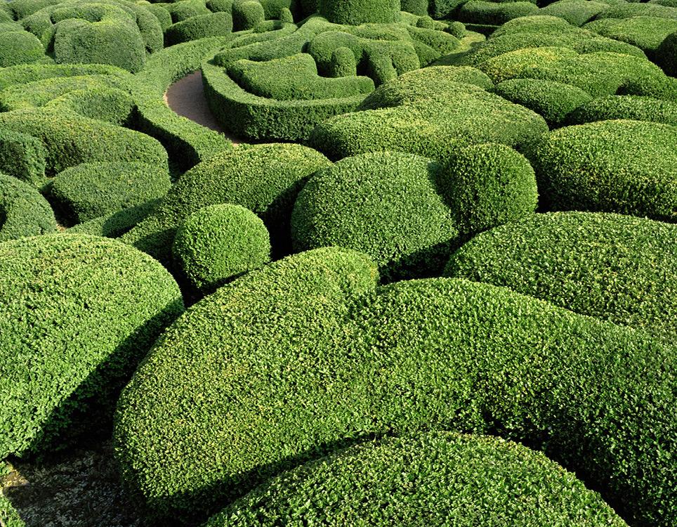 foto-giardini-castello-marqueyssac-francia-arte-topiaria-philippe-jarrigeon-8