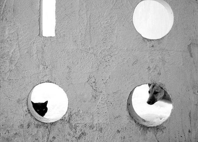 fotografie-bianco-nero-surreali-alexey-menschikov-03