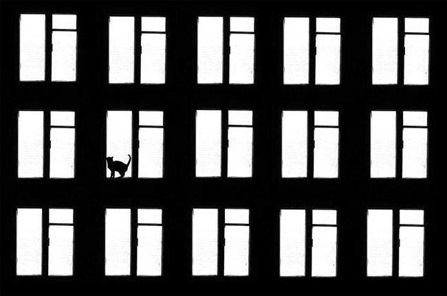 fotografie-bianco-nero-surreali-alexey-menschikov-05