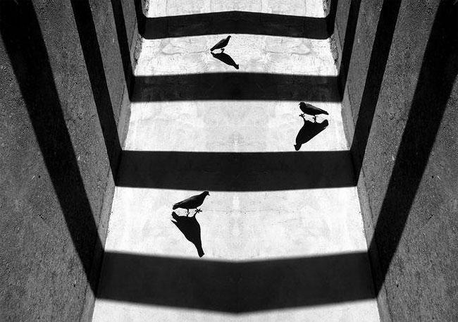 fotografie-bianco-nero-surreali-alexey-menschikov-09
