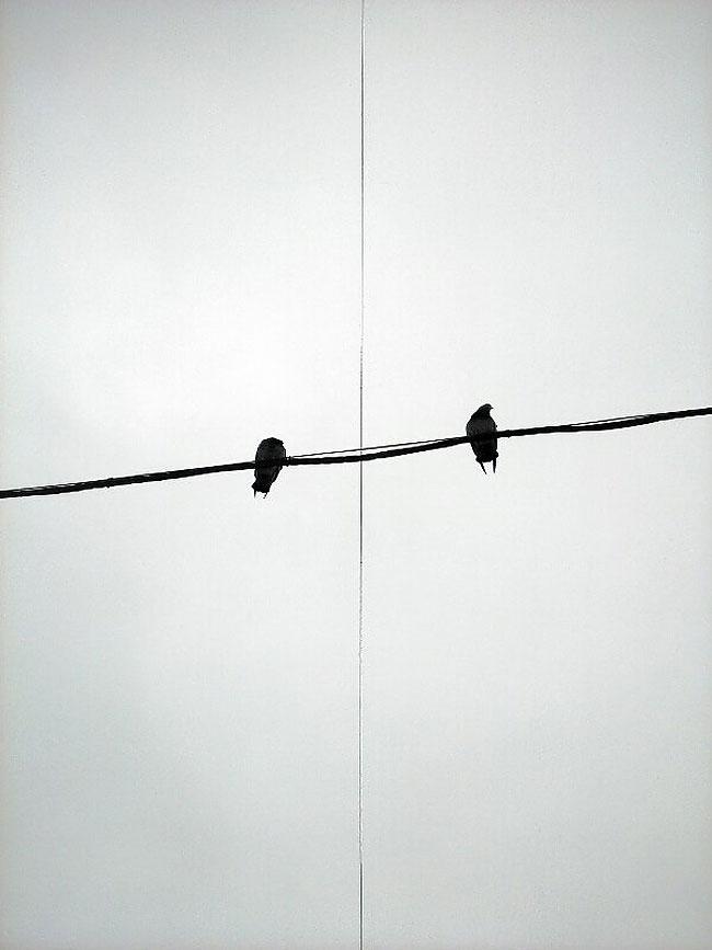 fotografie-bianco-nero-surreali-alexey-menschikov-21