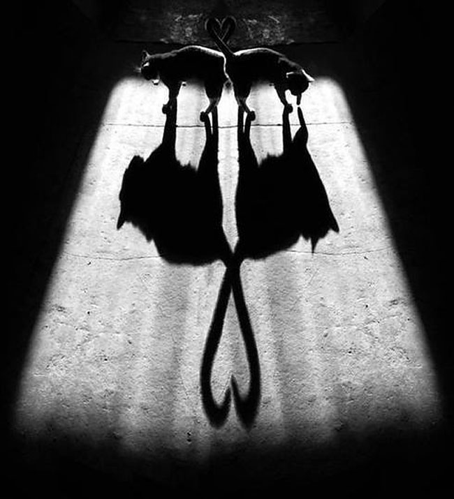 fotografie-bianco-nero-surreali-alexey-menschikov-23