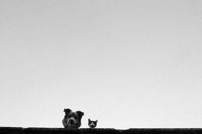 fotografie-bianco-nero-surreali-alexey-menschikov-35