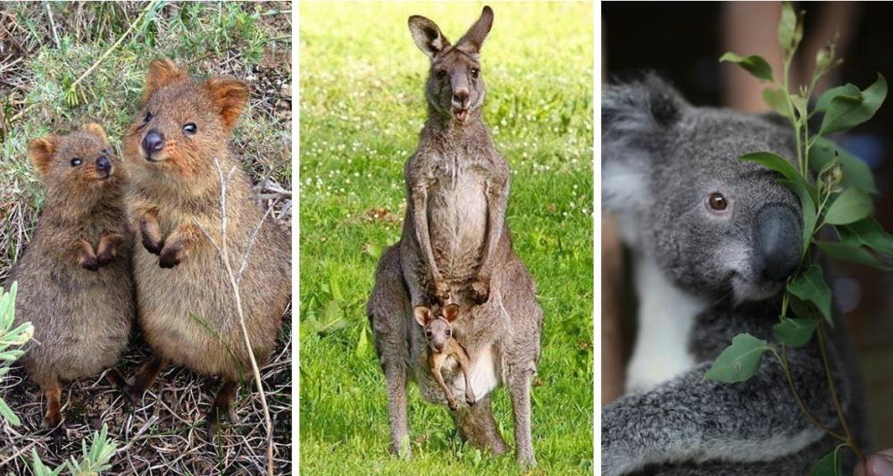 luoghi-da-visitare-australia-11