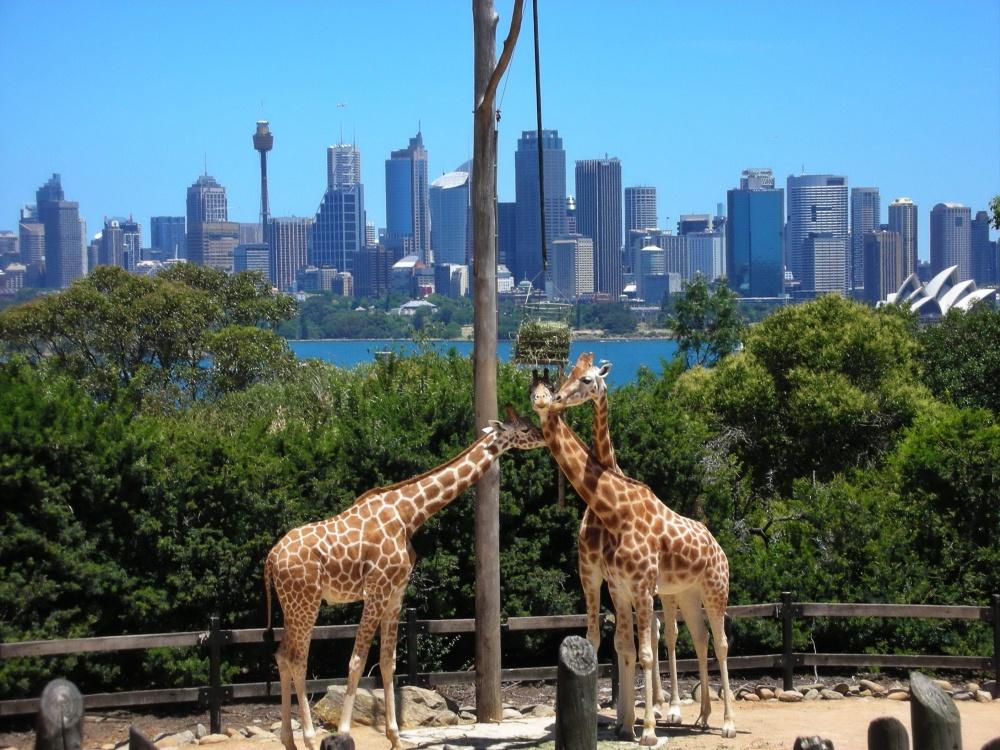 luoghi-da-visitare-australia-17