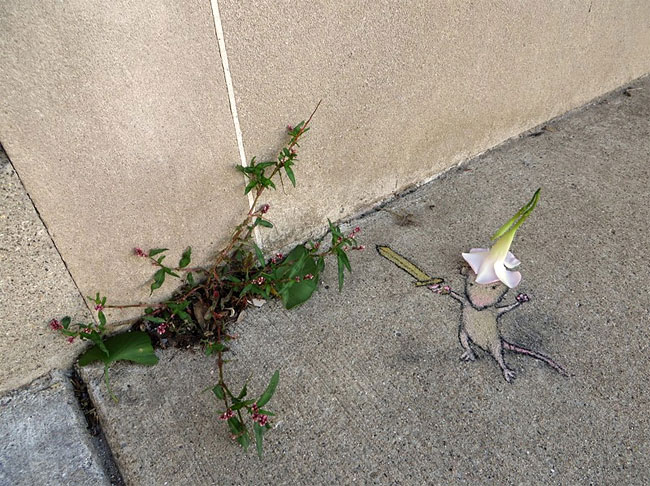 street-art-anamorfica-bizzarra-gesso-david-zinn-12