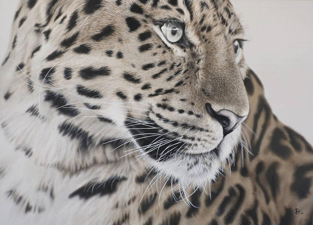 dipinti-iperrealisti-artista-autodidatta-animali-selvatici-franziska-treptow-6
