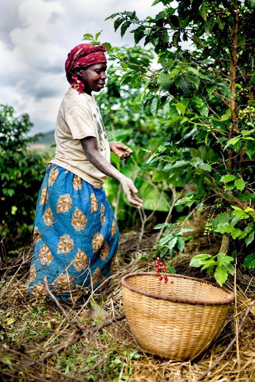 foto-ruanda-produzione-caffe-ritratti-alan-schaller-05