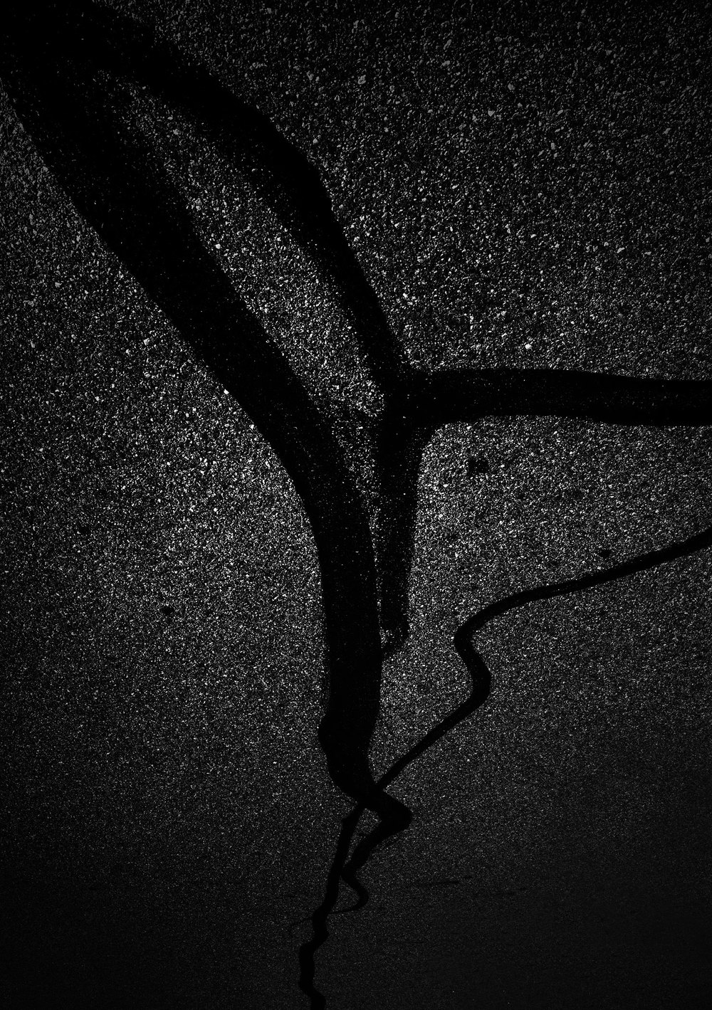 fotografia-notturna-bianco-nero-strade-sembrano-cielo-stellato-michael-massaia-3