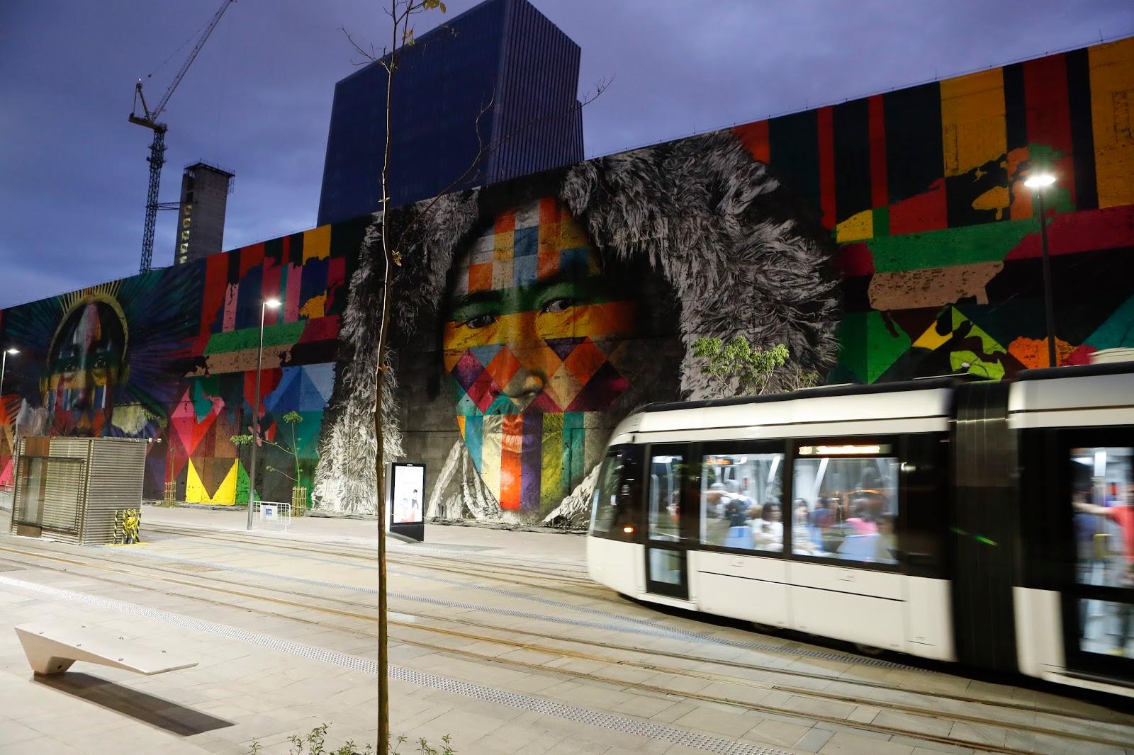 murales-più-grande-mondo-eduardo-kobra-las-etnias-rio-de-janeiro-10