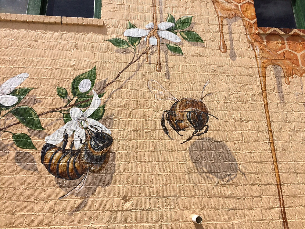 progetto-street-art-api-mondo-the-good-of-the-hive-matthew-willey-04