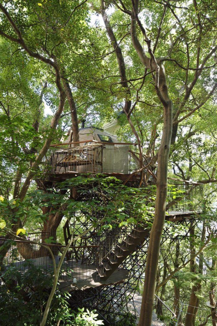 sala-te-su-albero-struttura-nido-uccelli-tearoom-hiroshi-nakamura-giappone-04