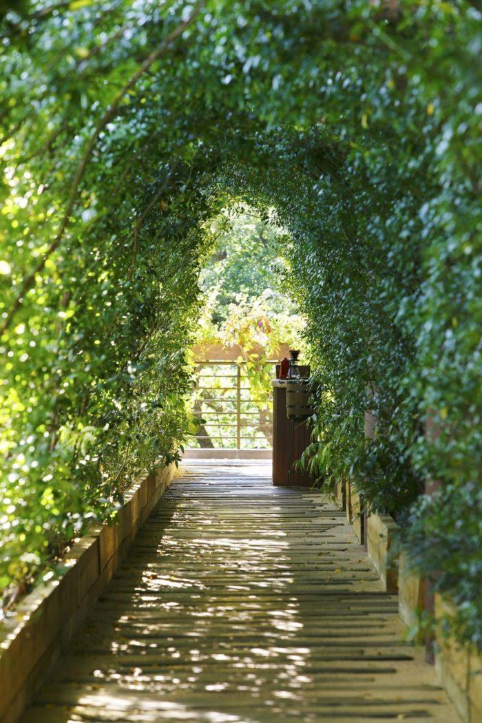 sala-te-su-albero-struttura-nido-uccelli-tearoom-hiroshi-nakamura-giappone-06