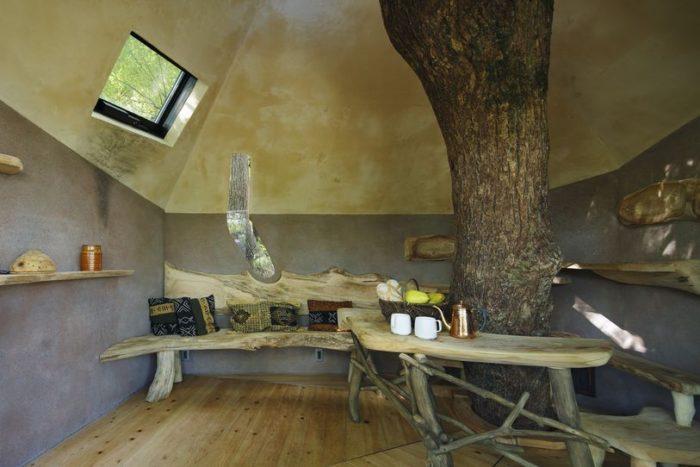 sala-te-su-albero-struttura-nido-uccelli-tearoom-hiroshi-nakamura-giappone-10