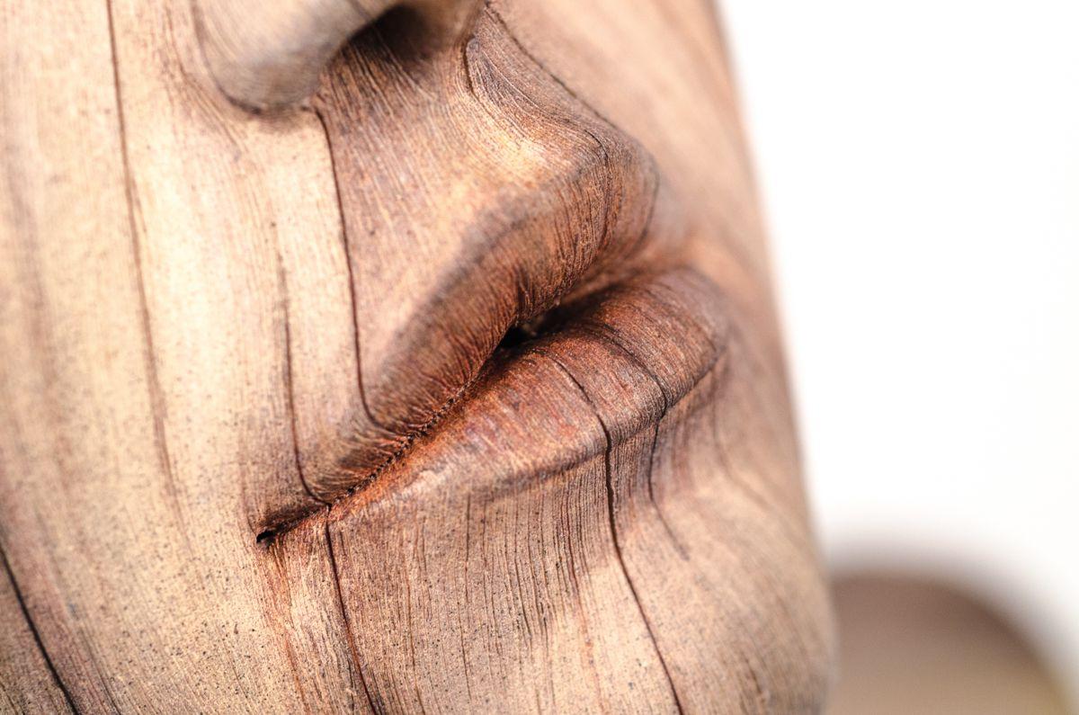 sculture-argilla-sembrano-legno-christopher-david-white-09