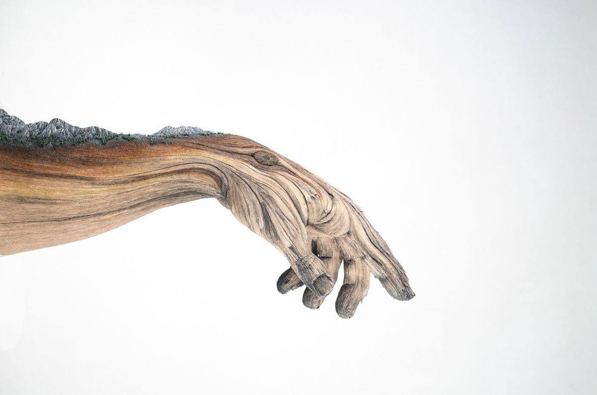 sculture-argilla-sembrano-legno-christopher-david-white-12