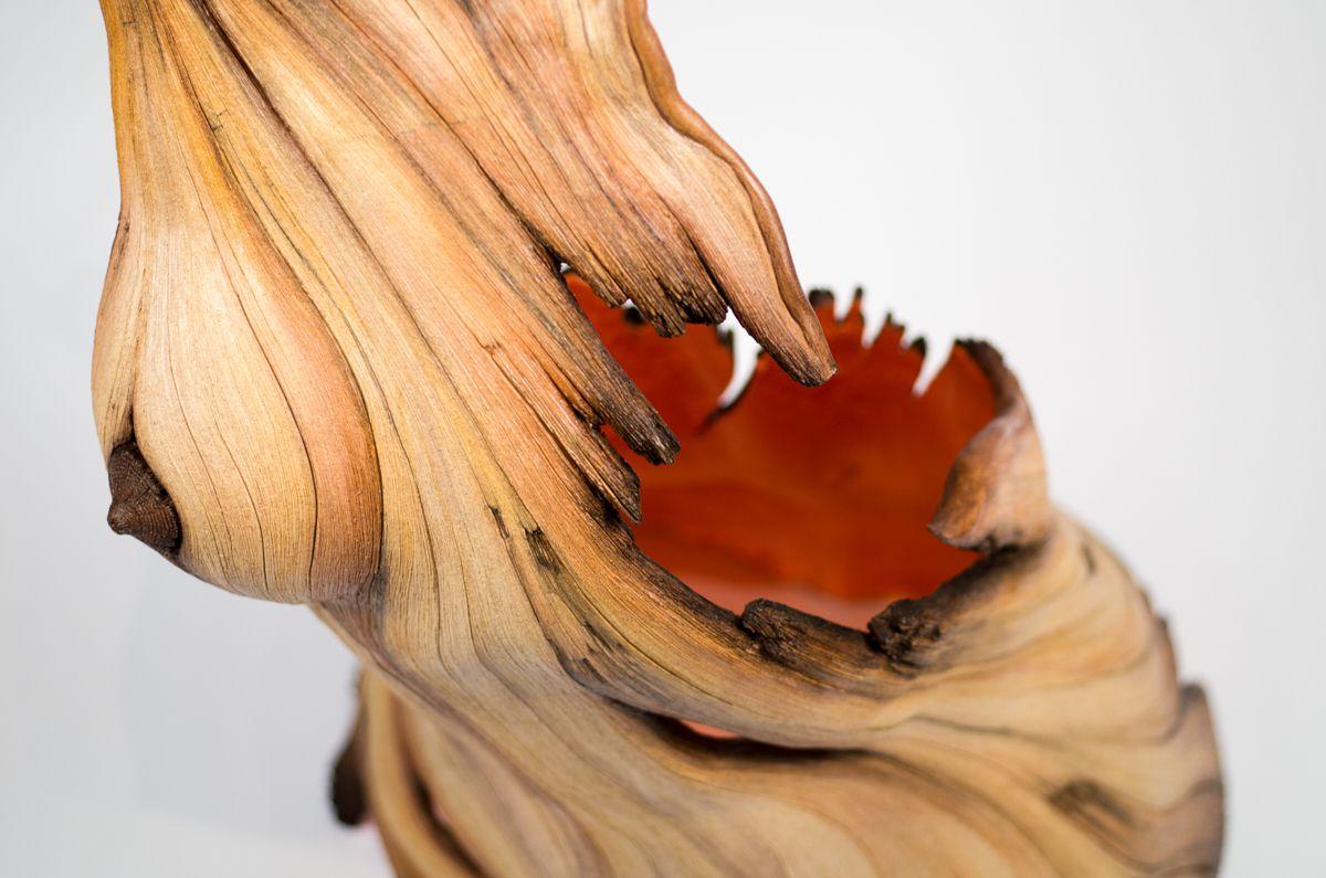 sculture-argilla-sembrano-legno-christopher-david-white-28